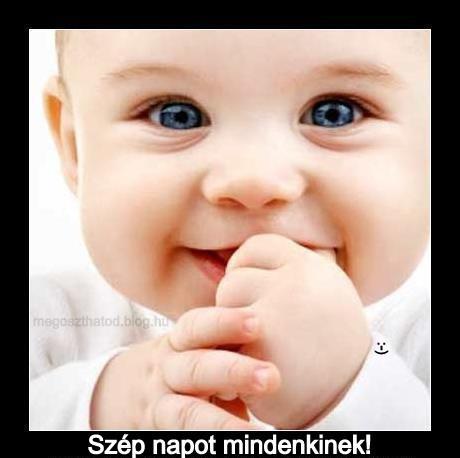 Szép napot! :-)