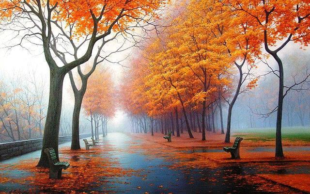 Gyönyörű őszi kép