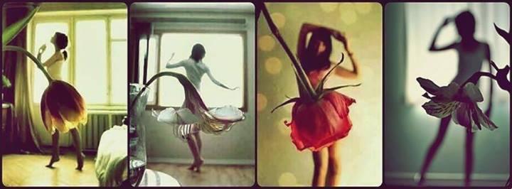 Virágba öltözve
