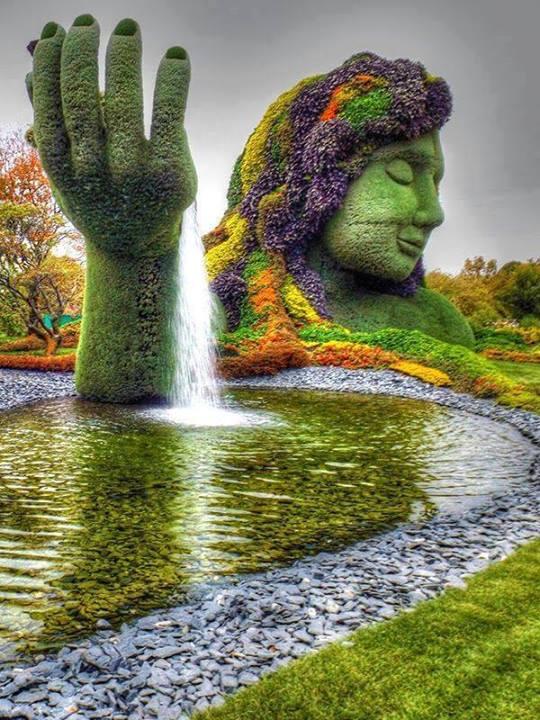 Növénykert