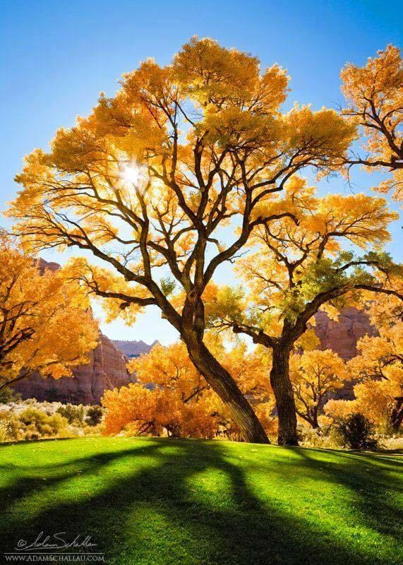 Gyönyörű az ősz