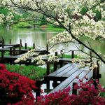 Gyönyörű a tavasz