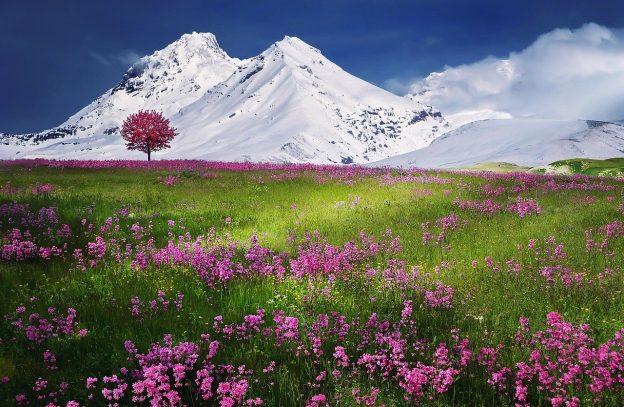 Tél és tavasz egyszerre